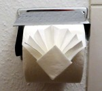 Toilet paper diamond & fan fold
