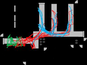 Spaghetti Diagram Multi Color