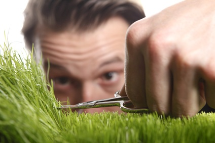 IMAGE(https://www.allaboutlean.com/wp-content/uploads/2016/12/Fotolia-Grass-and-scissors.jpg)