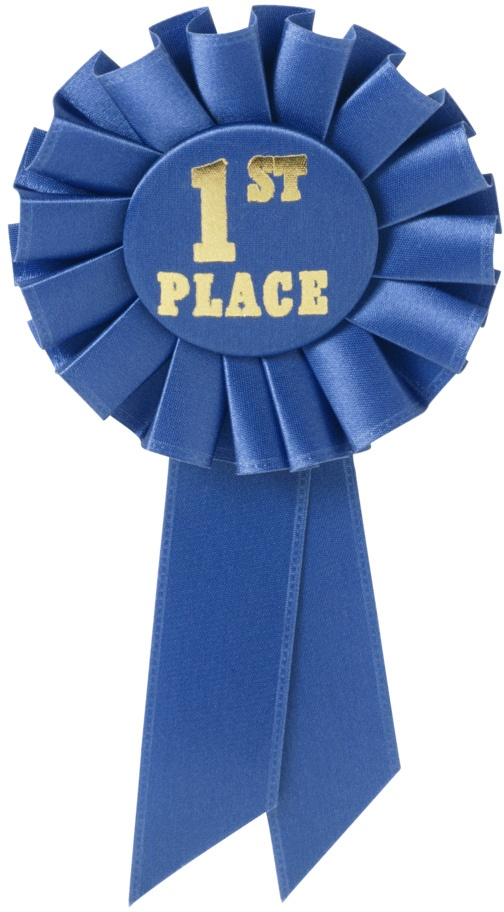 Image result for first place ribbon