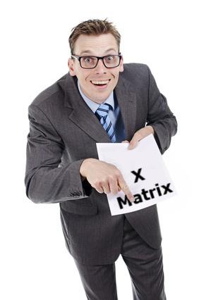 Sneaky Consultant X-Matrix