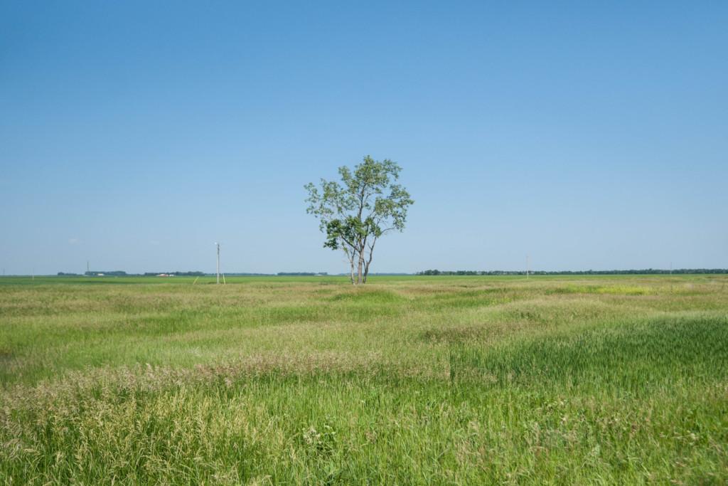 Greenfield, North Dakota