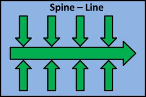 spine-line