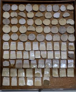 Wedgwood Cream Trials