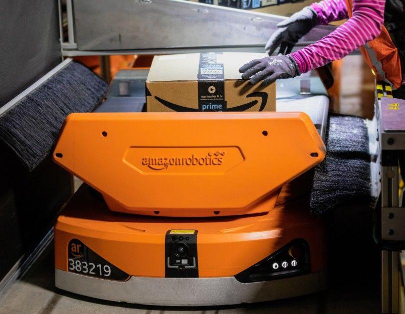 Amazon Pegasus Sort Bot