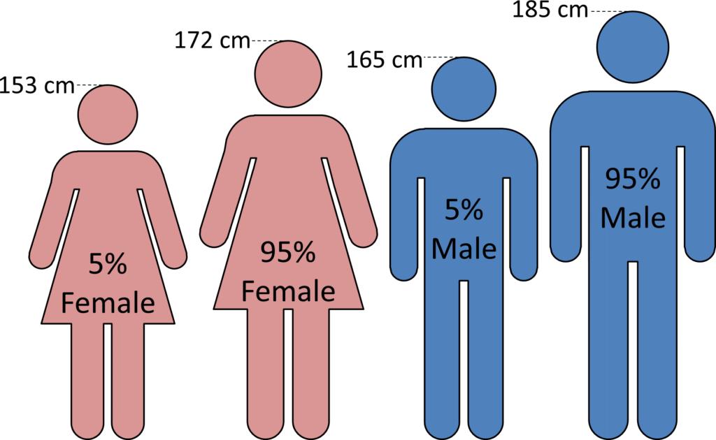 95 Percentile and 5 Percentile Male and Female